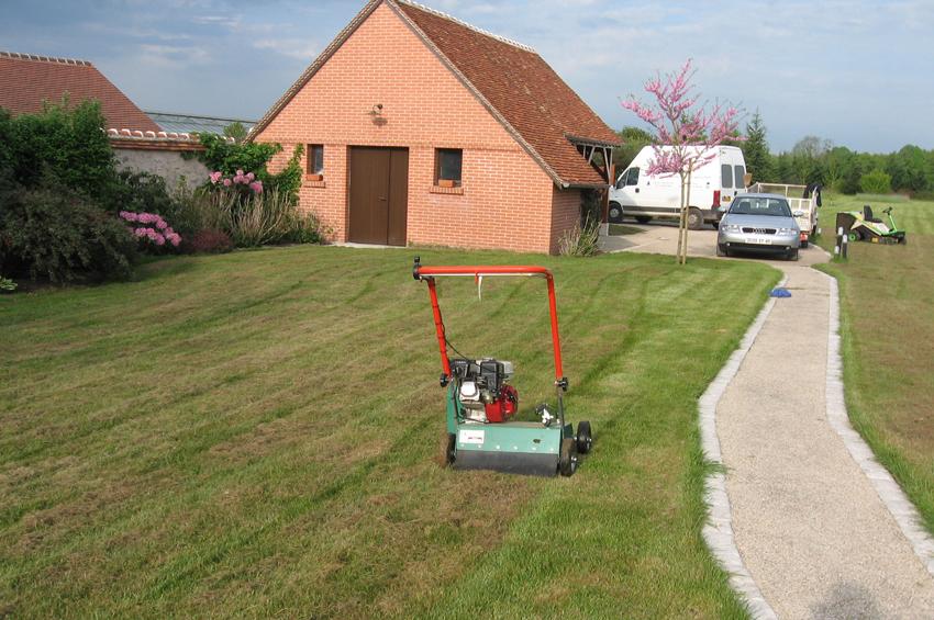 03 entretien de pelouse scarification henri paysage for Creation pelouse
