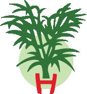 Tonte de pelouse entretien et cr ation henri paysage for Forfait tonte pelouse