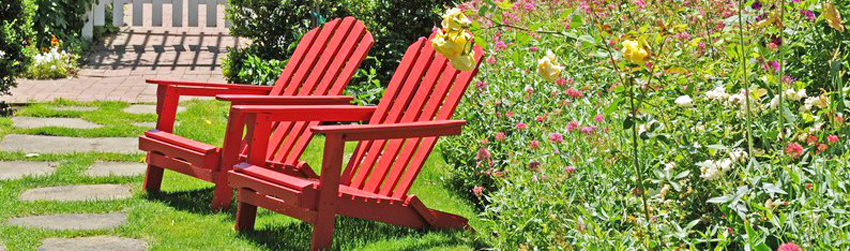 Actualit s et bons conseils page 2 sur 5 henri paysage for Entretien salade jardin